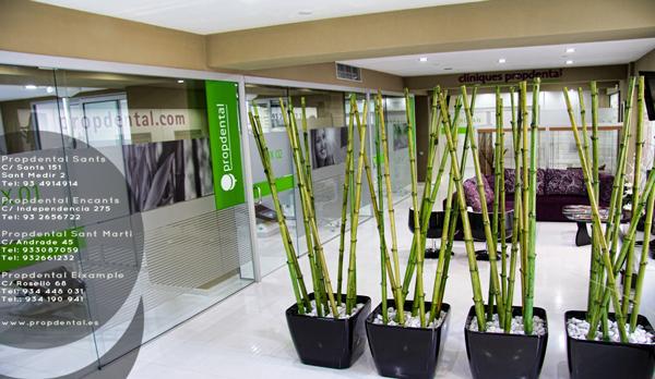 clínicas dentales Barcelona