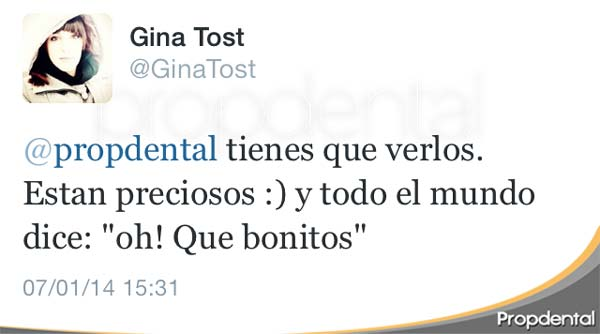 twitter gina tost