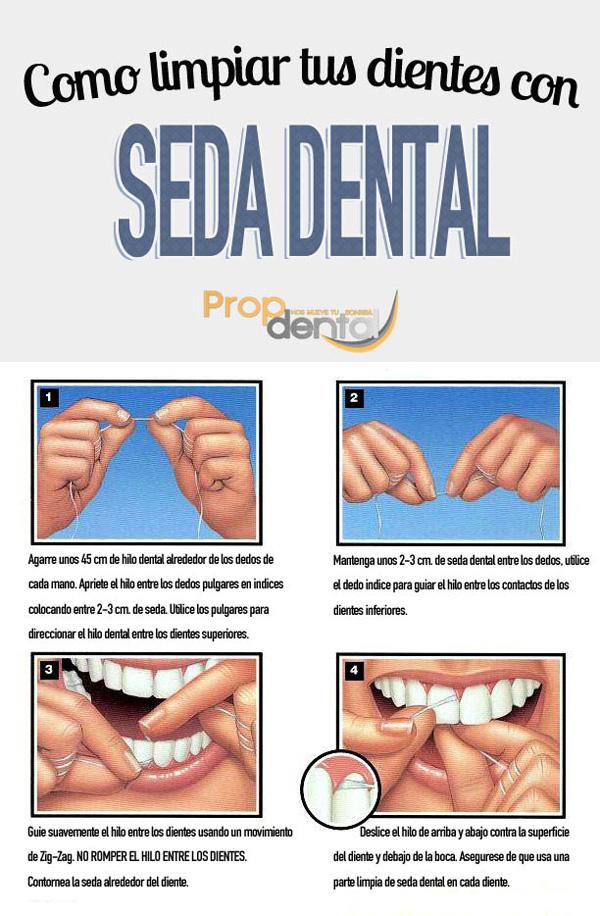 infografía seda dental