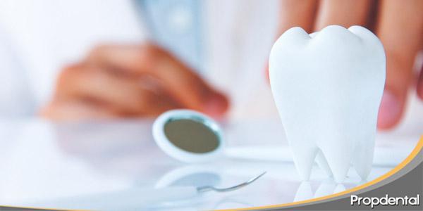 Fractur dental