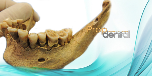odontologia forense para la identificacion personal2