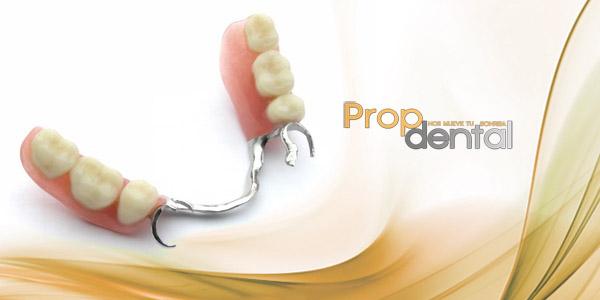 protesis removibles soportadas por implantes dentales