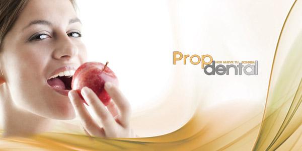 protesis removibles soportadas por implantes dentales2