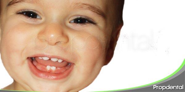 anatomia dental en odontopediatria