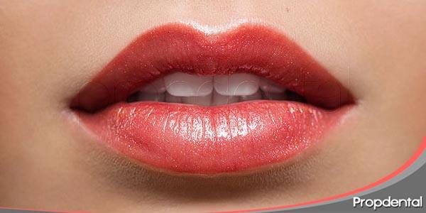 los labios son el marco natural de nuestros dientes