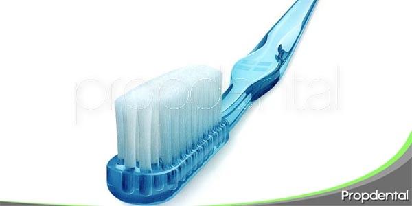 la historia del cepillo de dientes