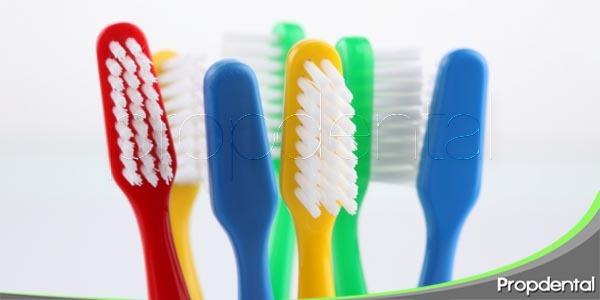 que debe tener un cepillo dental