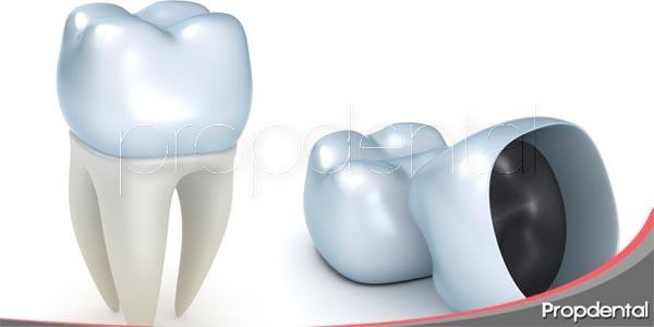 función de la corona dental