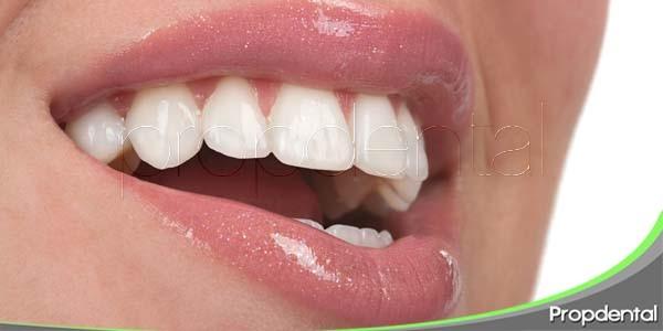 10 curiosidades dentales