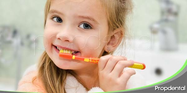 bases de la salud oral
