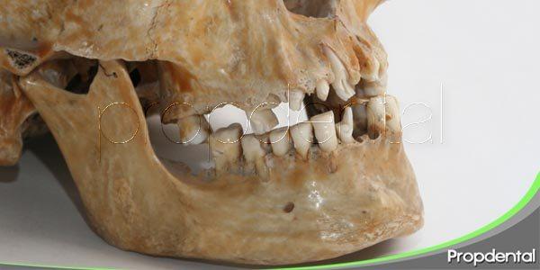 ¿para qué sirve la odontología forense?