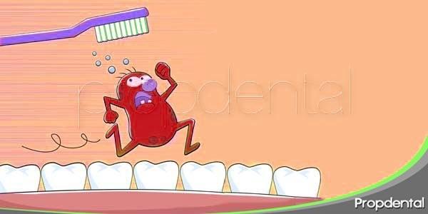 Adherencia de las bacterias de los dientes