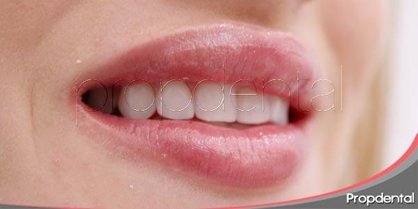 El campo de la odontología estética