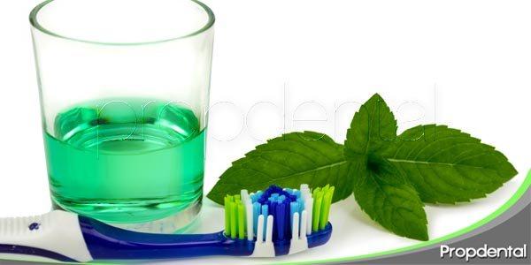 Desinfectar el cepillo de dientes: ¿cómo lo hago?