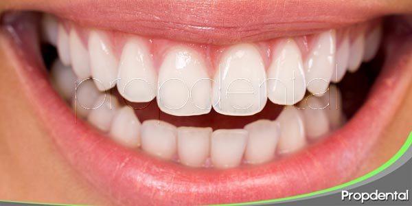 La anatomía de los dientes