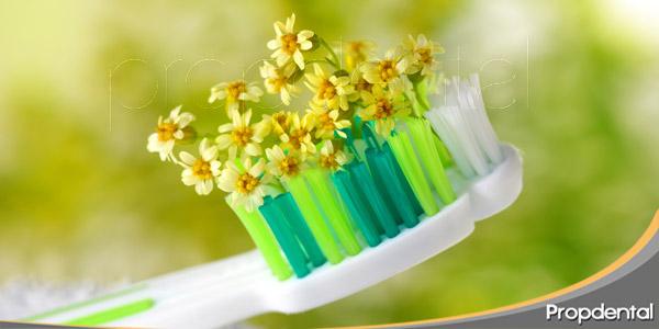 Cómo-mantener-una-buena-higiene-oral-en-primavera