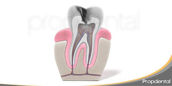 cuando-es-necesaria-una-endodoncia