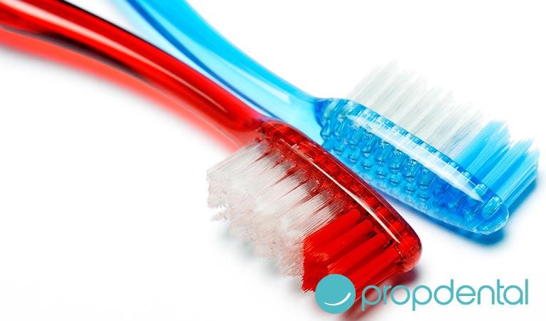 como debe ser tu cepillo de dientes
